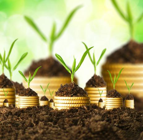 Микрокредиты   микрозаймы   деньги до зарплаты в Санкт