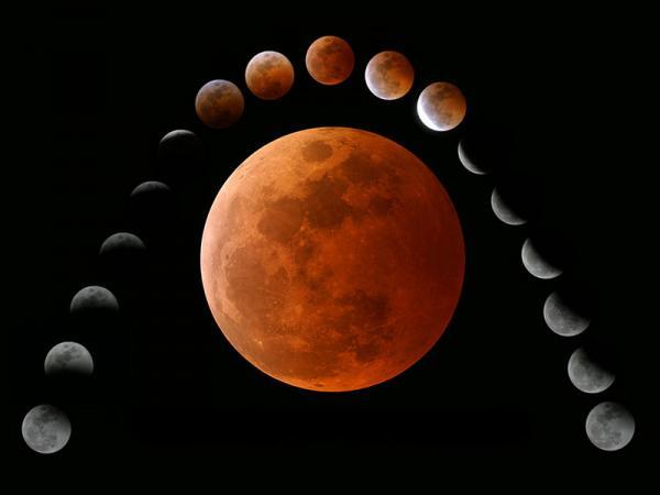 рождение 24 января по лунному календарю значение