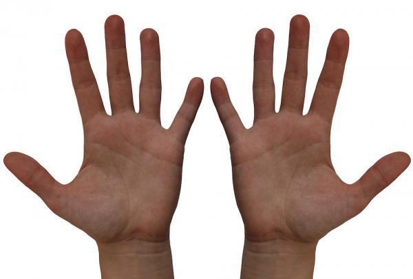 Проверка сексуальности по длине пальцев рук