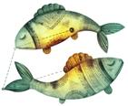 Гороскоп на март 2018 года Рыбы. Гороскоп на март 2018 года Рыбы, гороскоп на месяц март 2018 Рыбы, гороскоп на месяц март Рыбы для женщин и мужчин