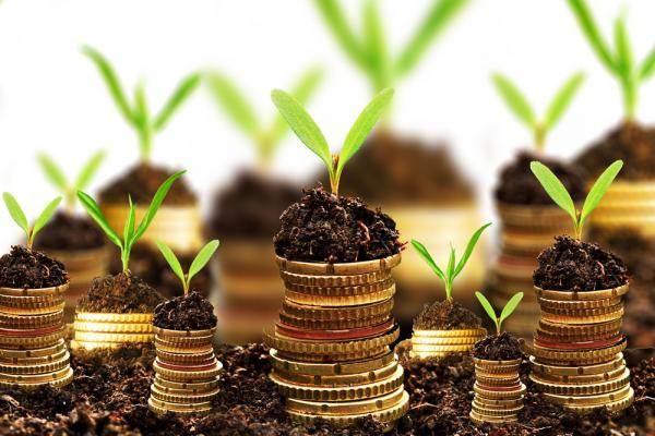 Ритуалы привлечь денег если вам срочно нужны деньги магия