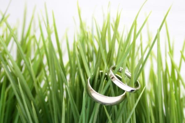 Как отмечать Зеленую свадьбу?